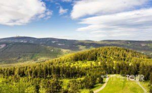 Wycieczka firmowa w Góry Harz - Brocken