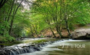 Wycieczka firmowa do Roztoczańskiego Parku Narodowego