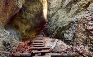 Wycieczka firmowa do Słowackiego Raju - wspinaczka po drabinkach