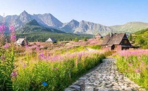 Wycieczka firmowa w Tatry na Halę Gąsienicową
