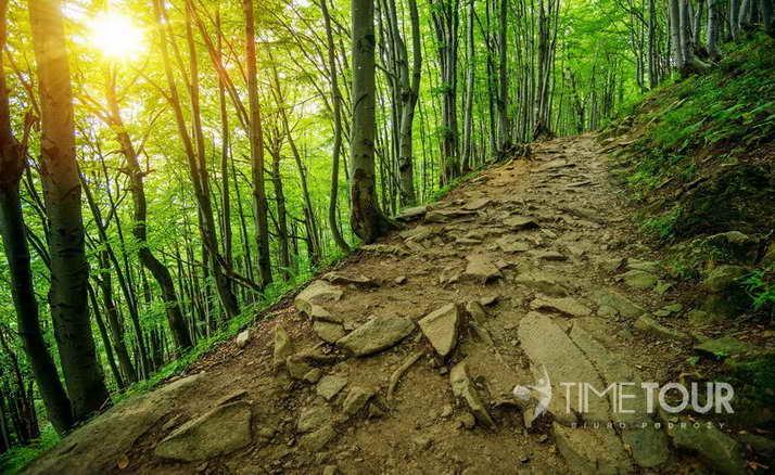Wycieczka szkolna w Bieszczady - szlak na Połoninę Wetlińską