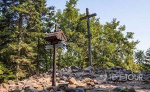 Wycieczka szkolna w Góry Świętokrzyskie - Łysica