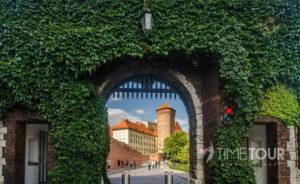 Wycieczka szkolna do Krakowa - Wawel