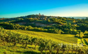 Wycieczka szkolna do Włoch - Toskania krajobraz